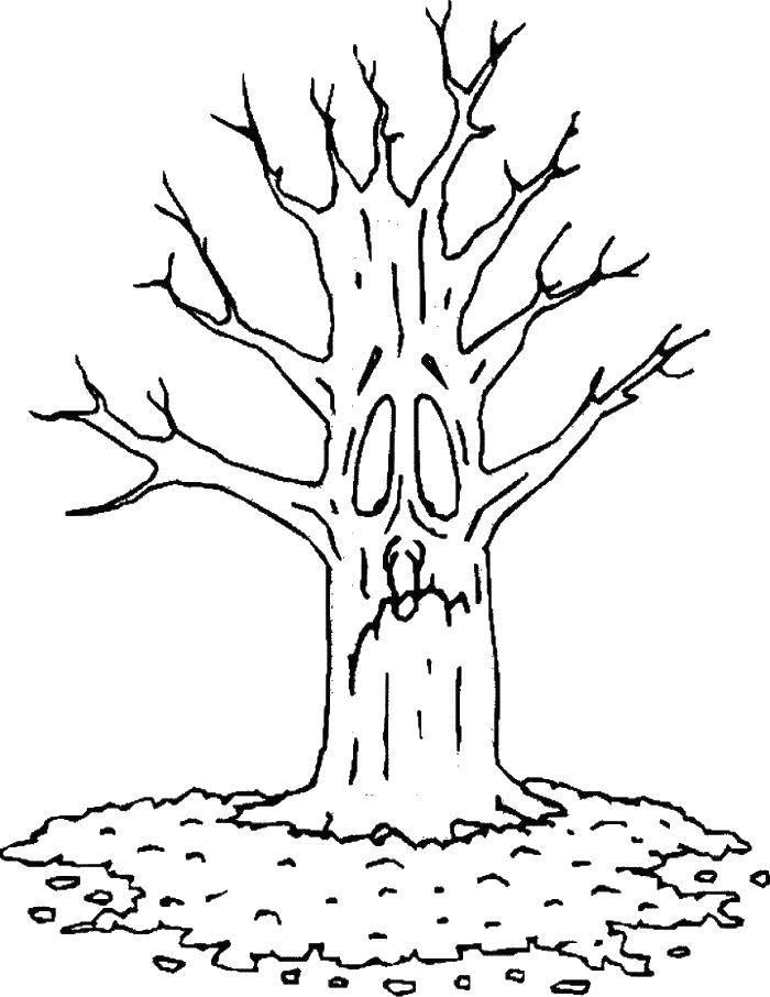 Раскраска Дерево испугано. Скачать Осень, листья.  Распечатать ,Осень,