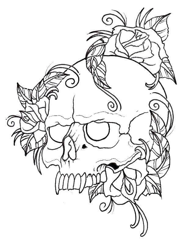Раскраска Роза на черепе. Скачать Череп.  Распечатать ,череп,
