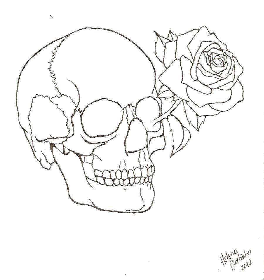Раскраска Роза в черепе. Скачать Череп.  Распечатать ,череп,