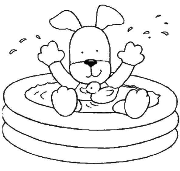 Раскраска Собачка купается с уткой. Скачать Животные, собака.  Распечатать ,Лето,