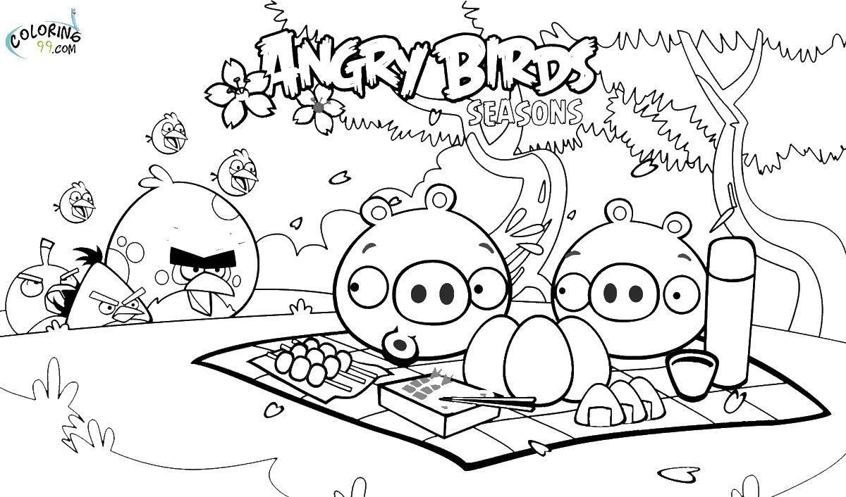Раскраска Свинья из angry birds на пикнике Скачать Игры, Angry Birds .  Распечатать ,Персонаж из игры,
