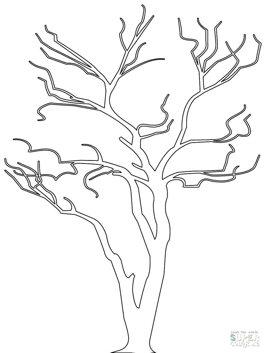 Раскраска Контур дерева Скачать Сердечко, любовь.  Распечатать ,Я тебя люблю,