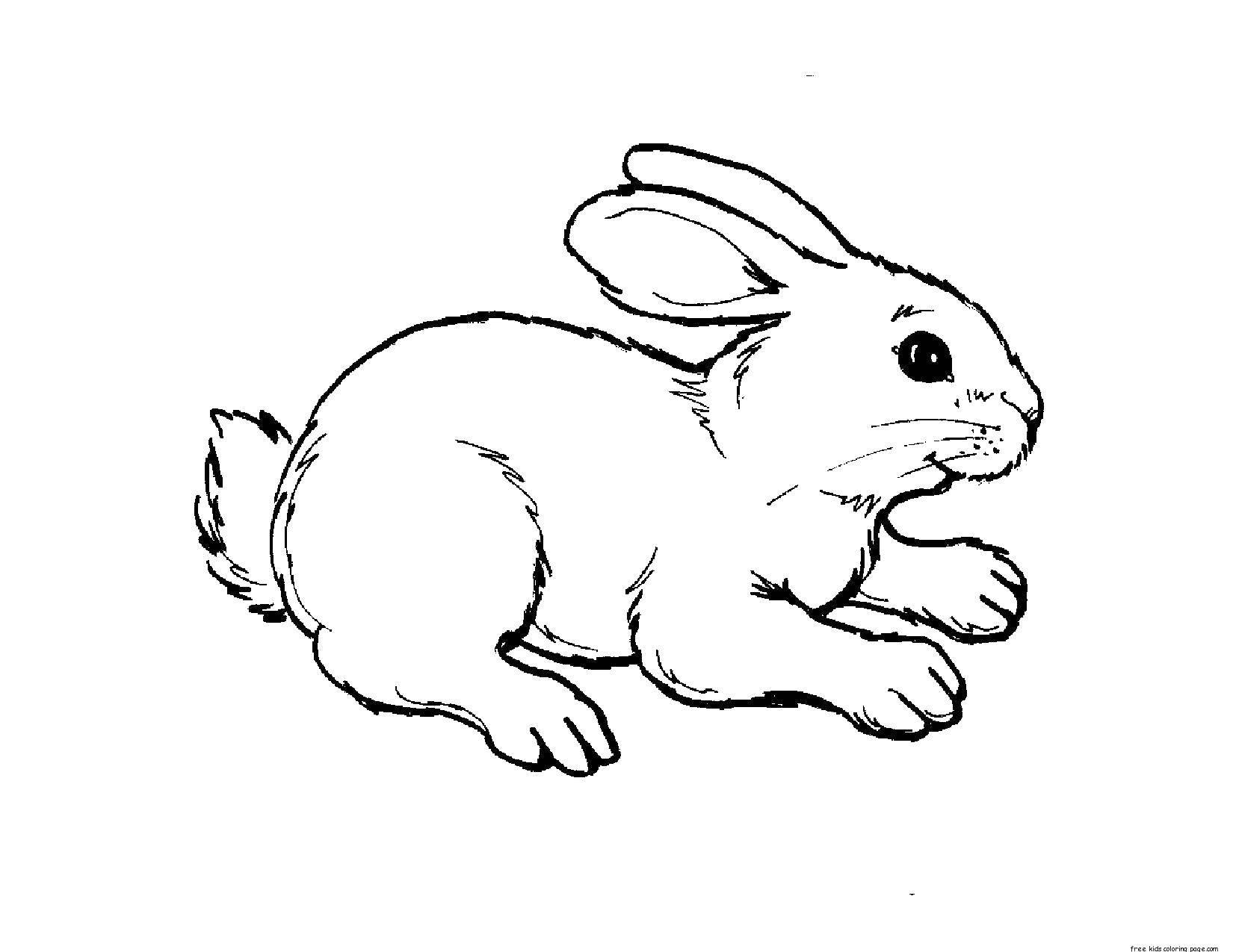 Раскраска Трусливый зайчишка Скачать Животные, зайчик.  Распечатать ,животные,