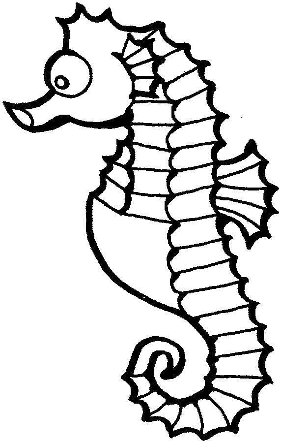 Раскраска Удивленный морской конёк Скачать Подводный мир, морские коньки.  Распечатать ,морское,