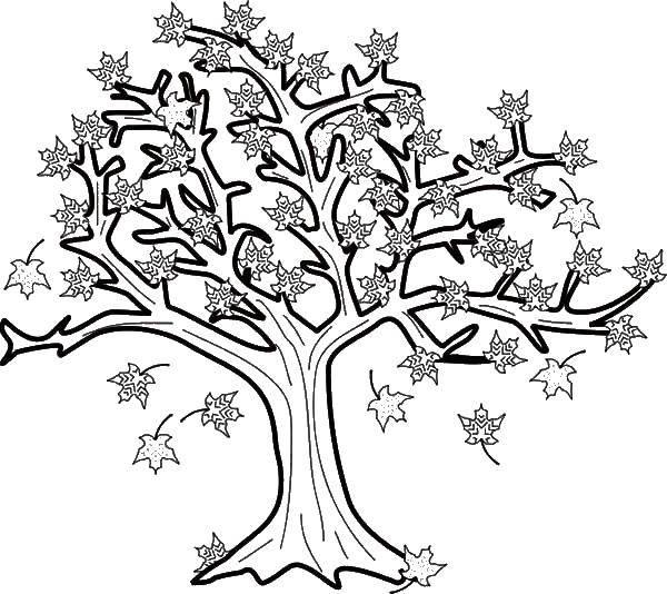 Раскраски дерева, Страница:4.