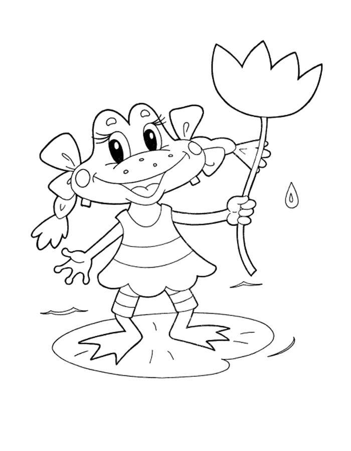 Название: Раскраска Лягушка с цветком. Категория: Раскраски для малышей. Теги: Рептилия, лягушка.