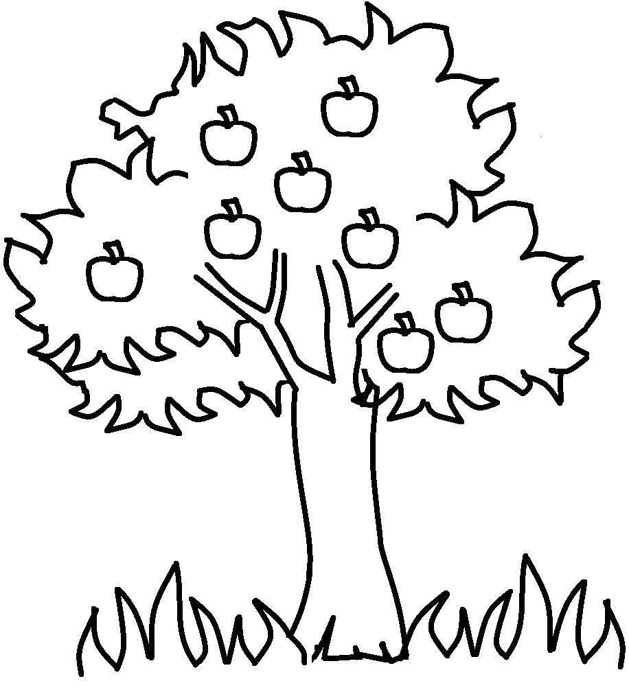 Раскраски дерева, Страница:5.