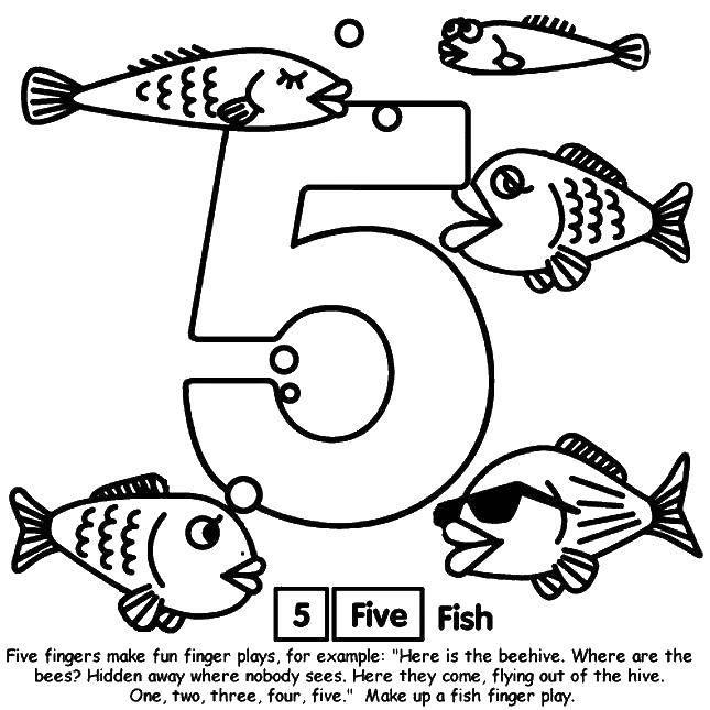 Раскраска 5 рыбок. Скачать Цифры, счёт, числа.  Распечатать ,Учимся считать,