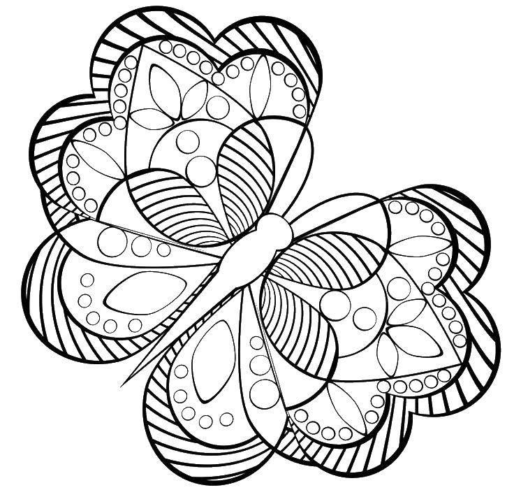 Раскраска Бабочка с большими узорчатыми крыльями. Скачать бабочки, насекомые, крылышки, узоры.  Распечатать ,бабочки,