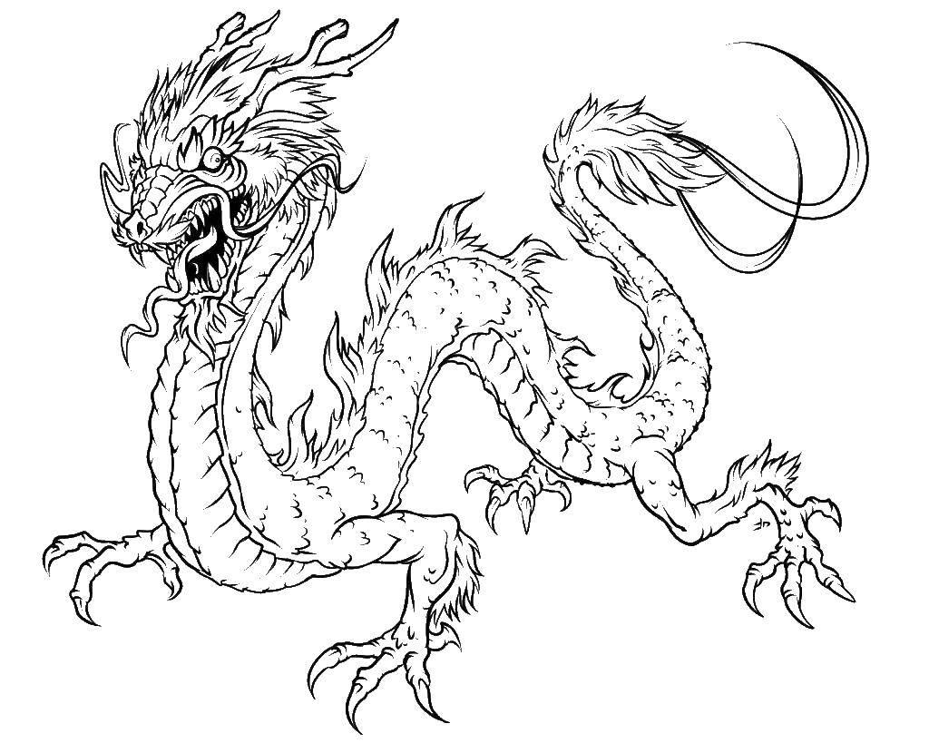 Раскраска Китайский дракон и язык. Скачать дракон, змей, язык.  Распечатать ,Драконы,