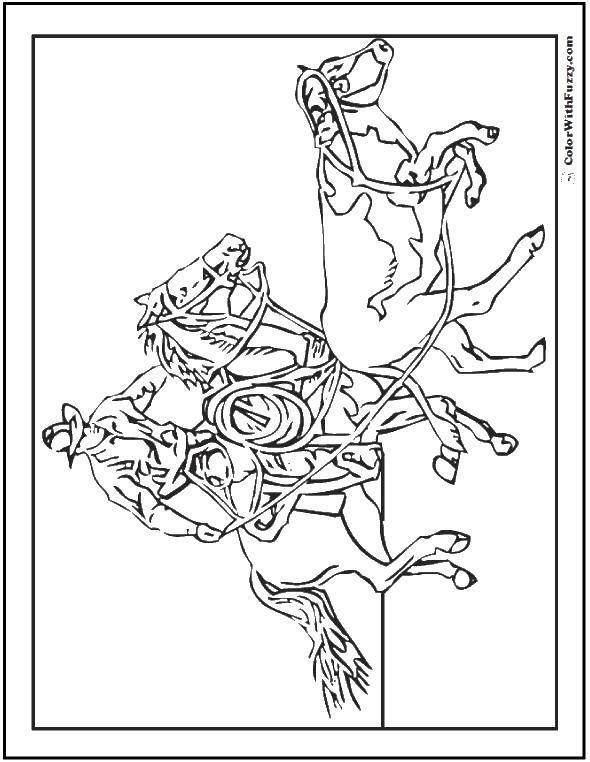 Раскраска лошади Скачать одежда, барби, девочки.  Распечатать ,одежда,