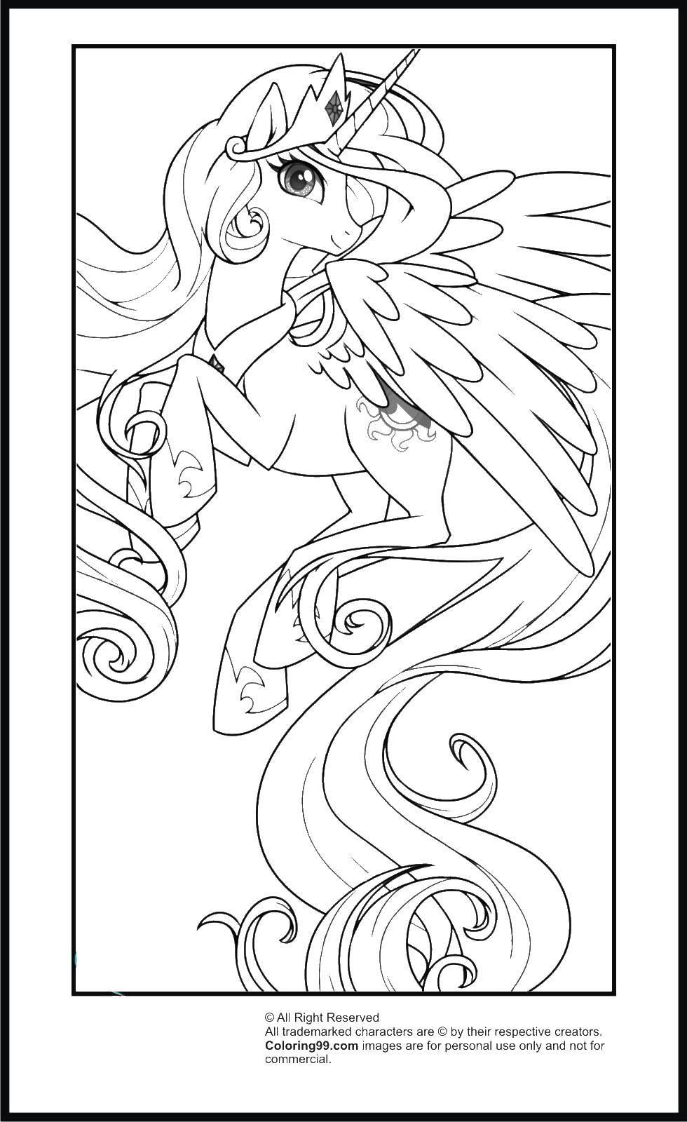 Раскраска Крылатый единорог Скачать единорог, крылья, хвост.  Распечатать ,мой маленький пони,