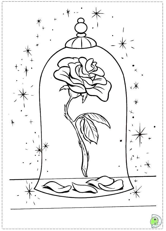 Раскраска Роза в сосуде Скачать роза, сосуд, лепестки.  Распечатать ,красавица и чудовище,