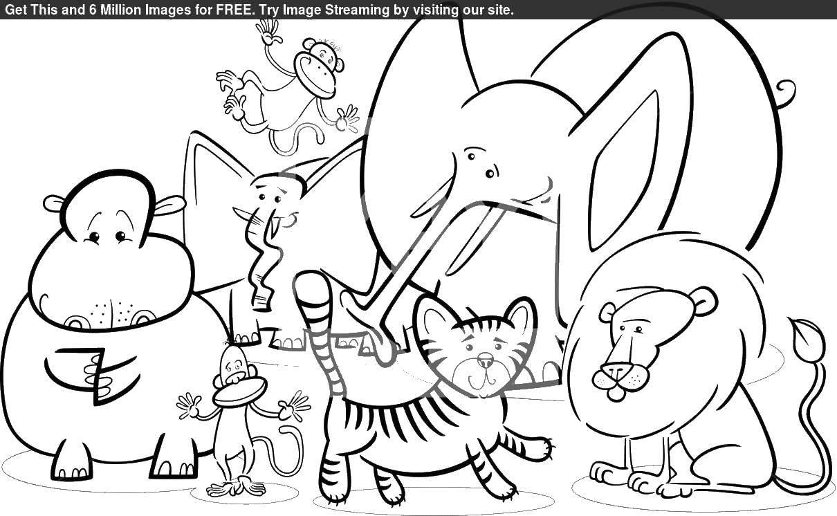 Раскраска дикие животные Скачать ,Рептилия, ящерица,.  Распечатать