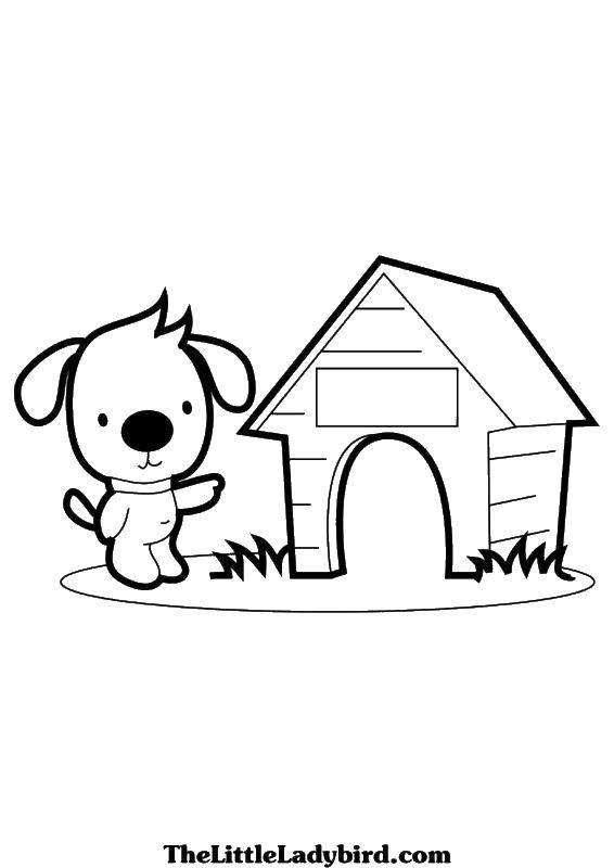 Раскраска Собачка и ее будка Скачать собаки, будка, животные.  Распечатать ,Собака и будка,