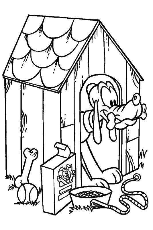 Раскраска Собачка в будке Скачать собаки, будки, пес.  Распечатать ,Собака и будка,