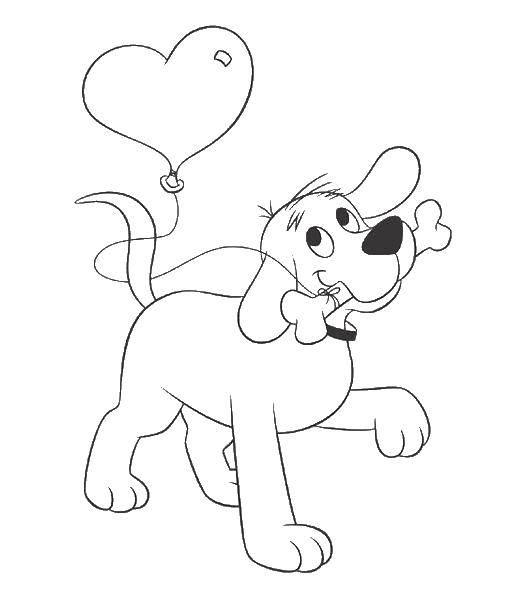 Раскраска Собака и кость с шариком. Скачать собака, кость, шарик.  Распечатать ,Собака,
