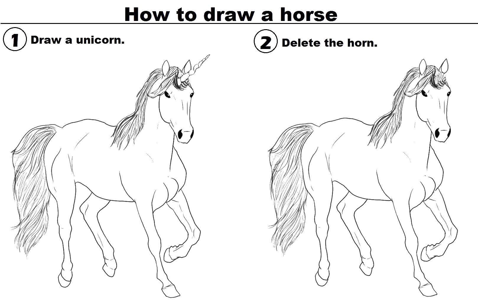 Раскраска Единорог и лошадь Скачать единорог, лошадь, хвост.  Распечатать ,как нарисовать пошагово,