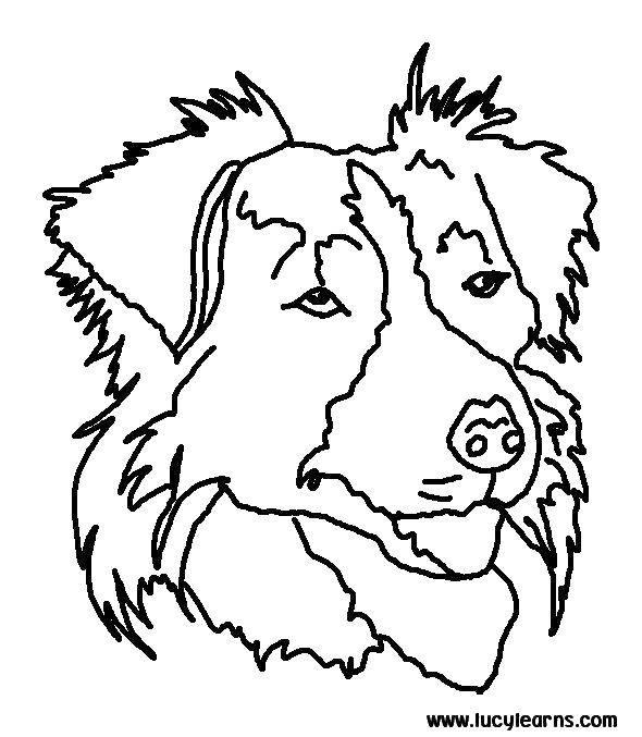 Раскраска Голова собаки Скачать голова, собака, уши, нос.  Распечатать ,собаки,