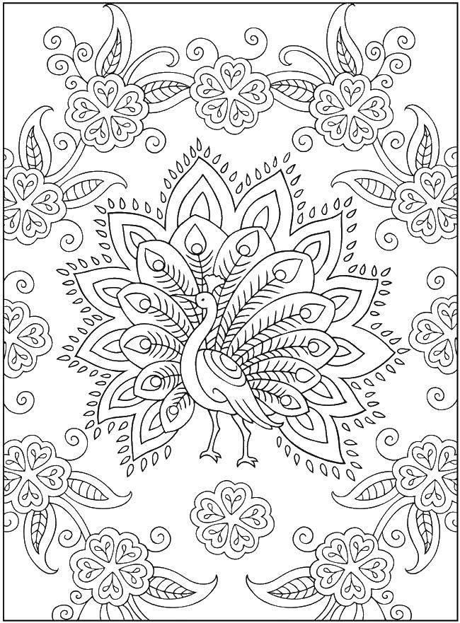 Раскраска Павлин и цвты Скачать узоры, павлин, цветы.  Распечатать ,Узоры,