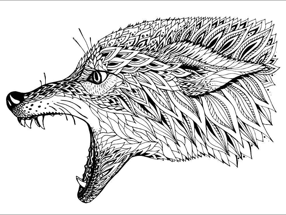 Раскраска Узорный грозный волк Скачать Узоры, животные.  Распечатать ,раскраски для подростков,