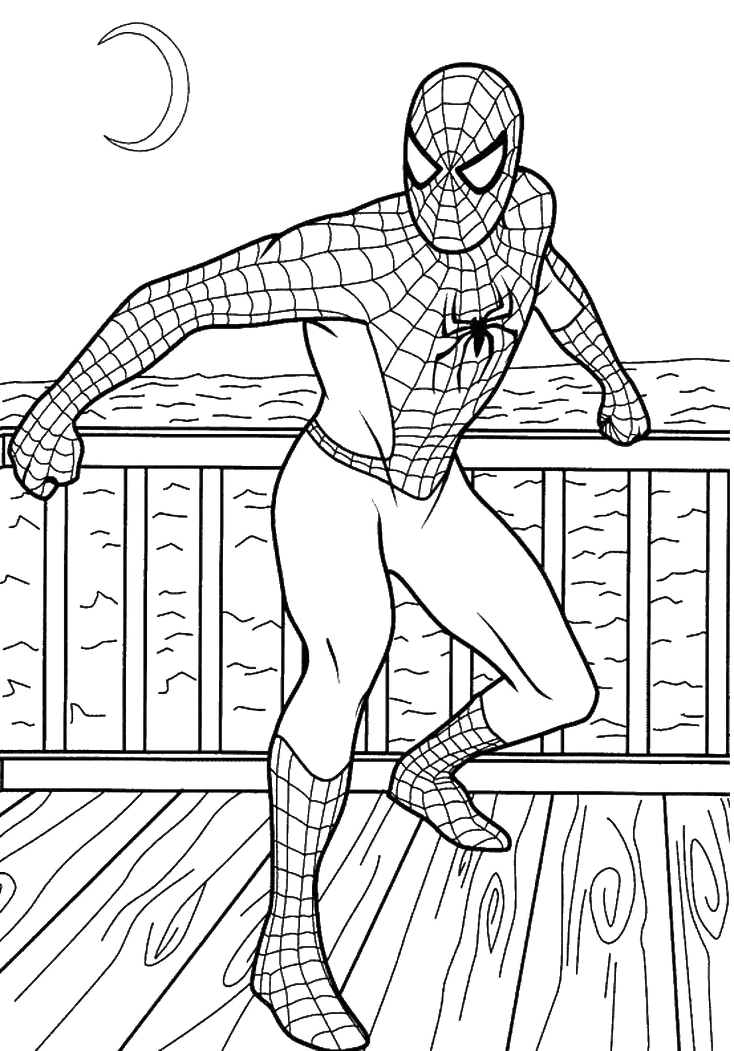 Название: Раскраска Человек паук. Категория: Для мальчиков. Теги: человек паук, супергерои.