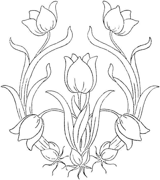 Раскраска Узоры с цветами Скачать ,узоры, цветы, тюльпаны,.  Распечатать