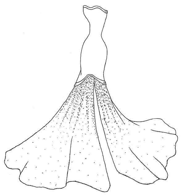 Раскраска Блестки на платье Скачать ,Одежда, платье,.  Распечатать