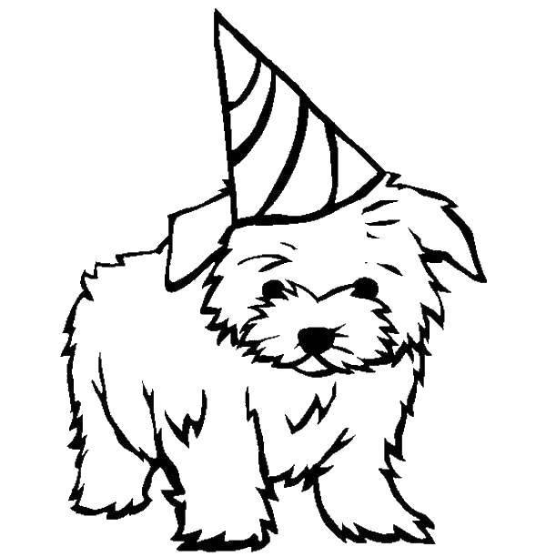 Название: Раскраска Песик. Категория: собаки. Теги: собаки, псы, песики.