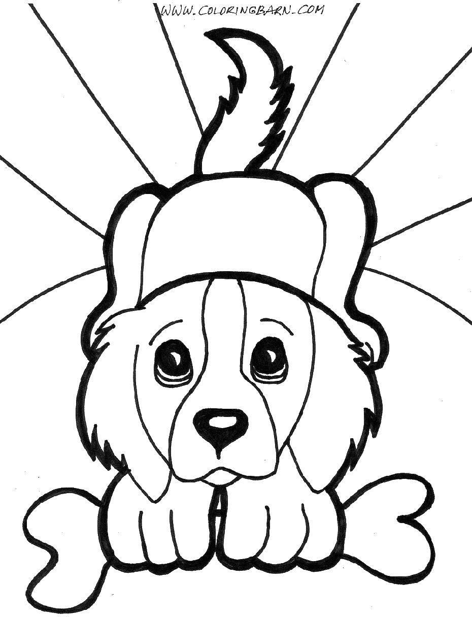 Раскраска Верный пёс с косточкой. Скачать Животные, собака.  Распечатать ,домашние животные,