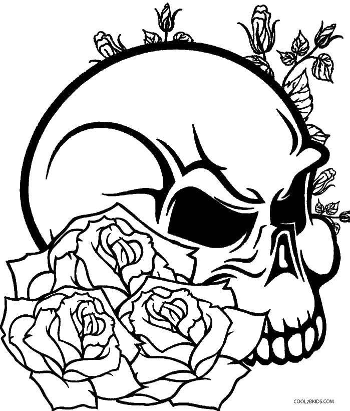 раскраски розы раскраска розы около черепка череп