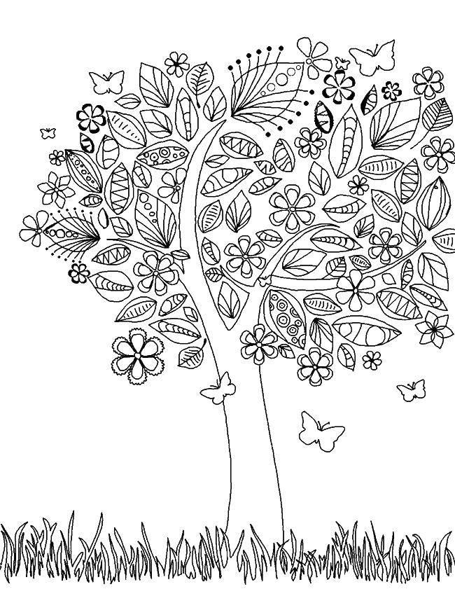 Раскраска Дерево и листья с узорами. Скачать дерево, листья, узоры.  Распечатать ,дерево,