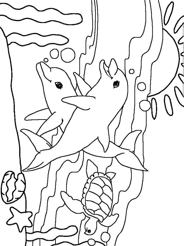Раскраска Два дельфина с черепахой и закат. Скачать дельфин, черепаха, солнце.  Распечатать ,морские обитатели,