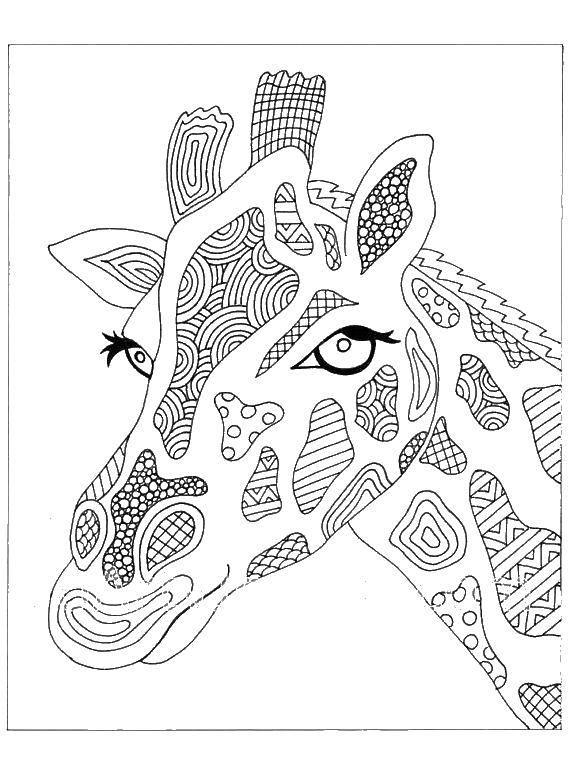 Раскраска Голова жирафа с узорами Скачать голова, жираф, узоры.  Распечатать ,Антистресс,