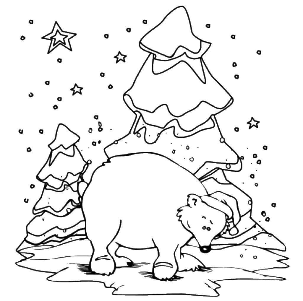 Раскраска Новогодний медведь Скачать Новый Год, ёлка, подарки, игрушки.  Распечатать ,новый год,