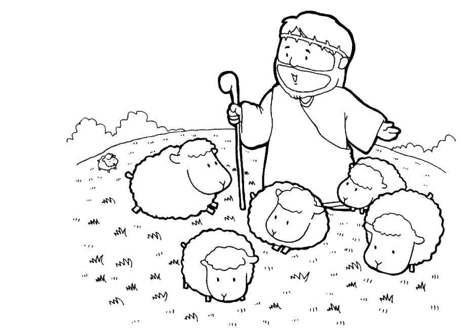 Раскраска Овечки и пастух. Скачать пастух, овечки.  Распечатать ,домашние животные,