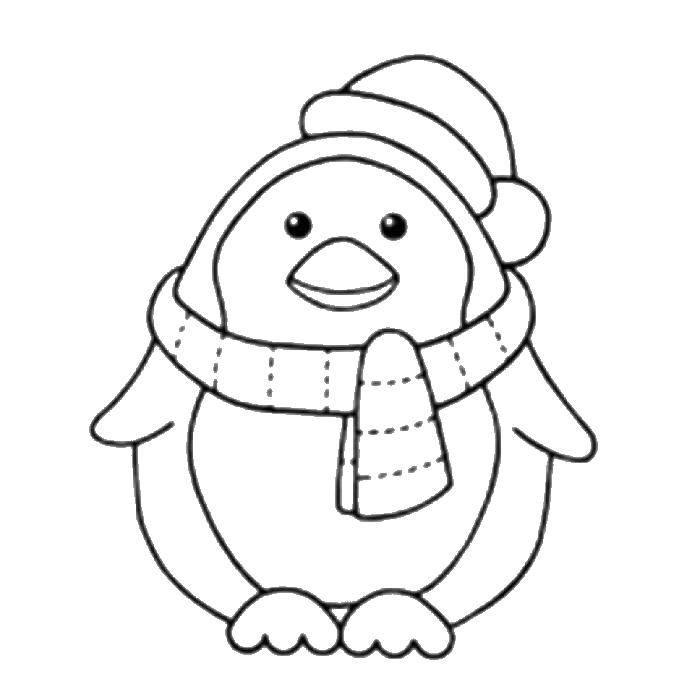 Раскраска Пингвинчик в шапочке и шарфе. Скачать Птицы.  Распечатать ,птицы,