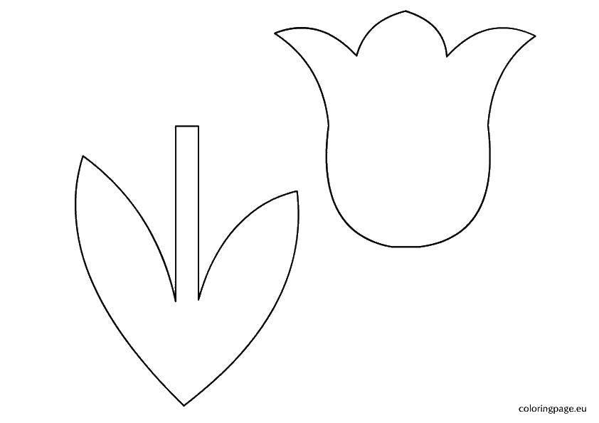Раскраска Вырежи тюльпан Скачать ,Цветы,.  Распечатать