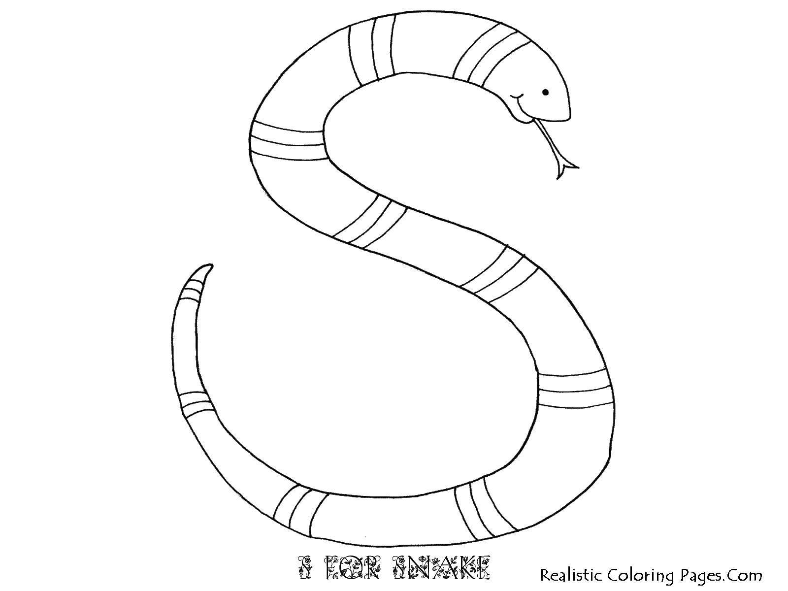 Раскраска Буква s в виде змеи Скачать ,буква, змея, язык,.  Распечатать