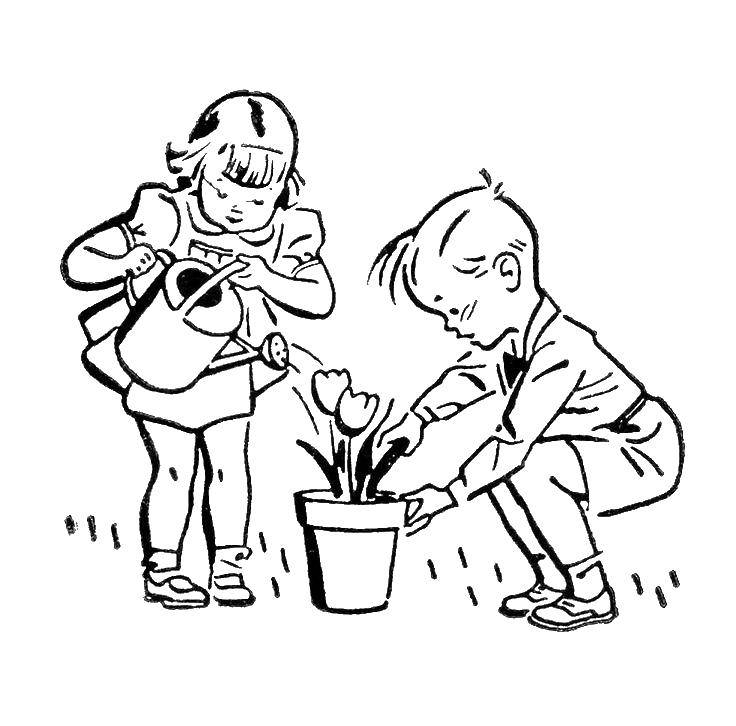 Раскраска Дети ухаживают за цветком Скачать дети, цветок, растения.  Распечатать ,дети,