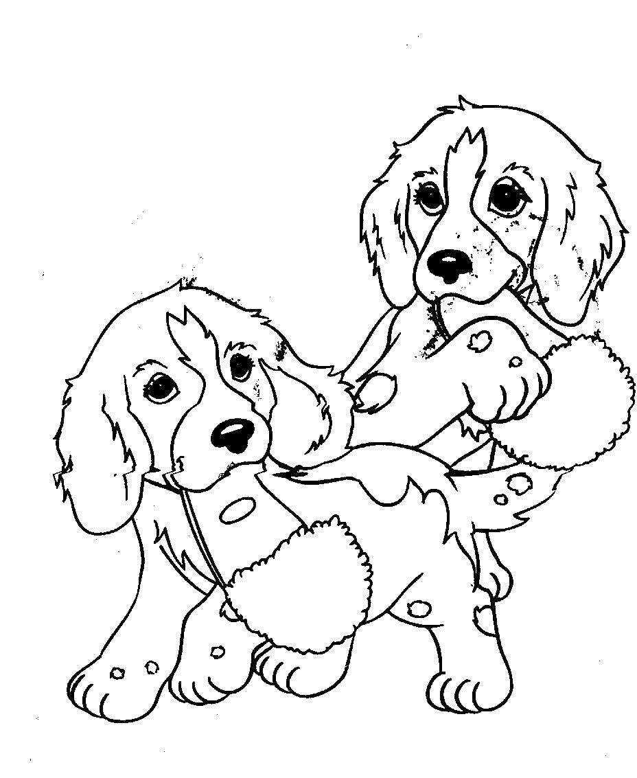 Раскраска Два щенка и тапки. Скачать щенки, тапки.  Распечатать ,собаки,