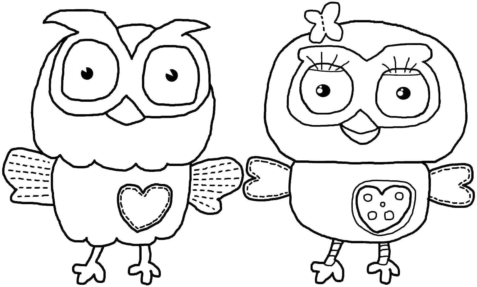 Раскраска Два совенка. Скачать сова, глаза крылья.  Распечатать ,птицы,