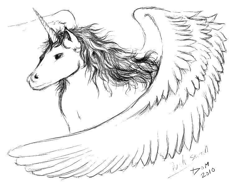 Раскраска Единорог с крыльями и волосами Скачать единорог, крылья, корона.  Распечатать ,раскраски,