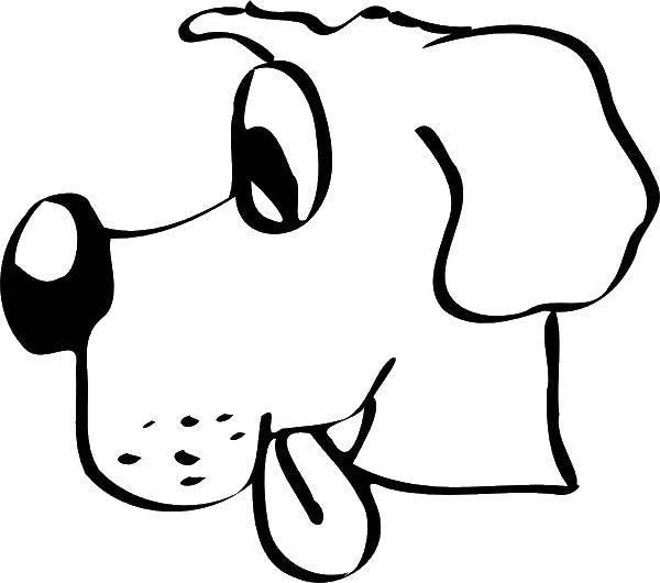 Раскраска Голова собаки с языком Скачать голова, собака, язык, нос.  Распечатать ,собаки,