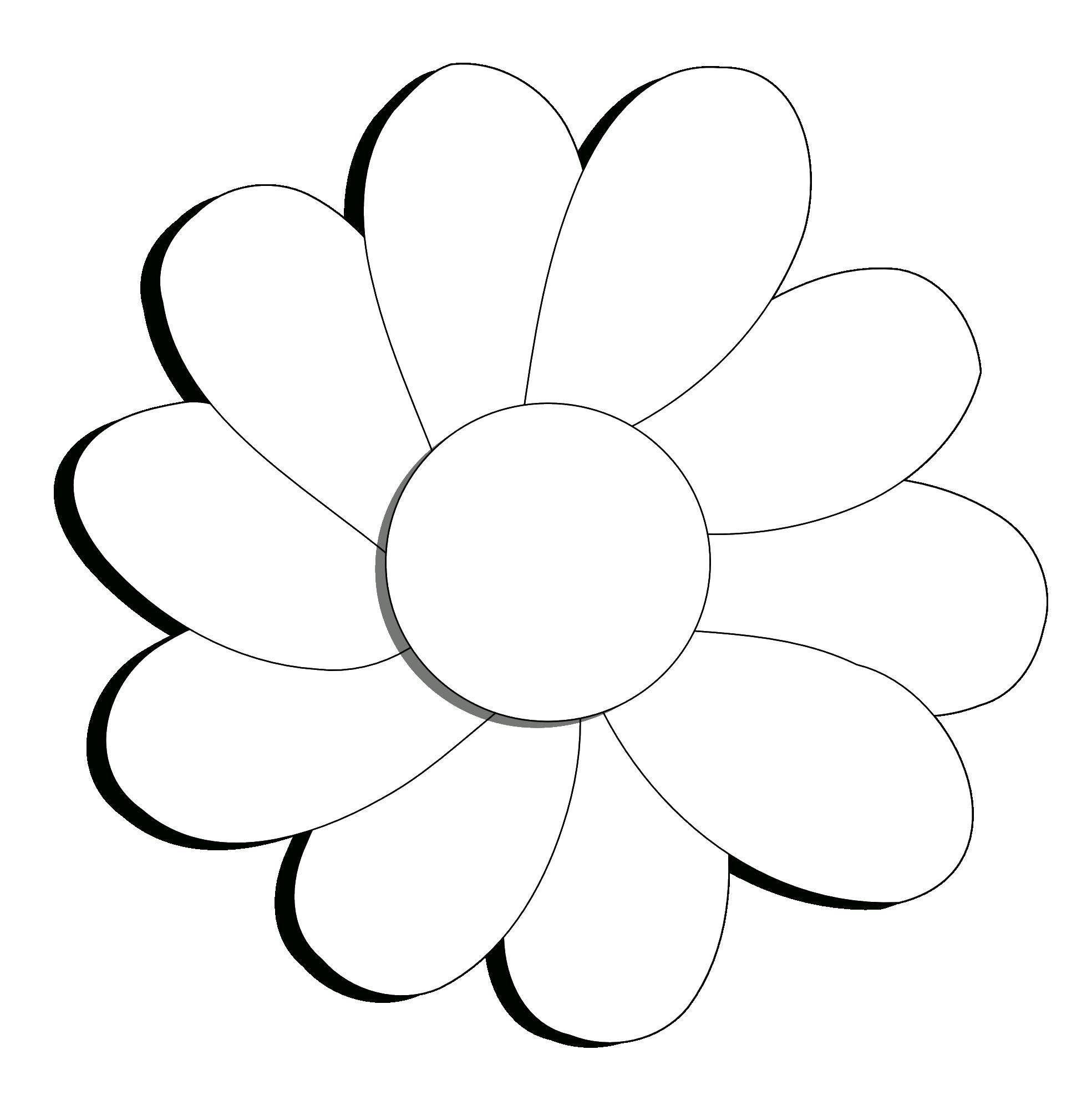 Раскраска Шаблон цветка ромашки Скачать контур, ромашка, лепестки.  Распечатать ,Контуры цветка для вырезания,