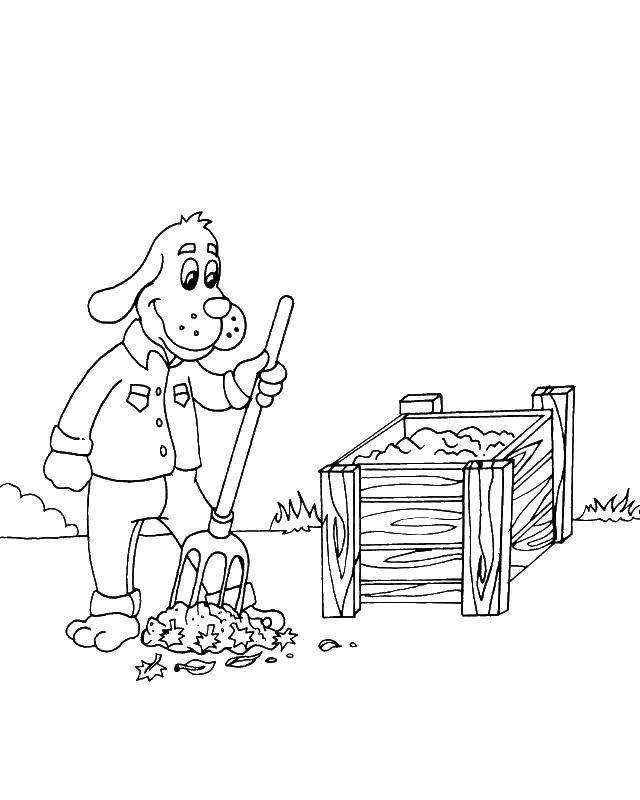 Раскраска Собачка убирает листья Скачать уборка, собачка, листья, листва.  Распечатать ,Уборка,