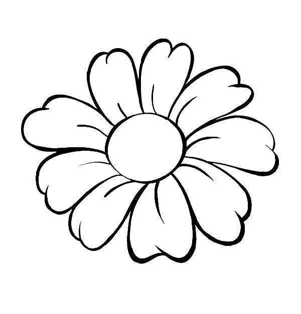 Раскраска Цветочек с лепестками. Скачать цветок, лепесток.  Распечатать ,Контуры цветка для вырезания,