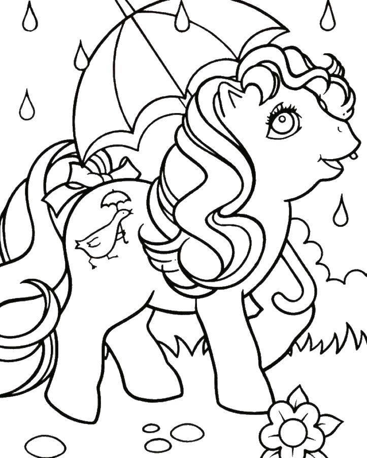 Раскраска Зонтик и пони Скачать пони, зонтик, дождь.  Распечатать ,мой маленький пони,