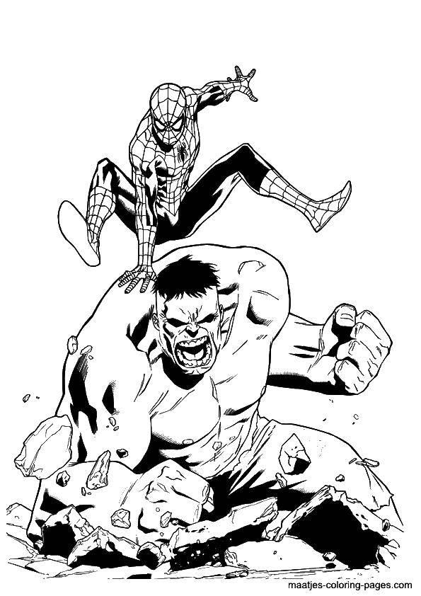 Название: Раскраска Халк и спайдермен. Категория: супергерои. Теги: супрегерои, Халк, зеленый, спайдермен.