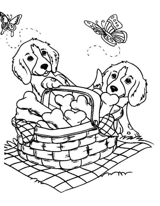 Название: Раскраска Щенки и корзина косточек. Категория: собаки. Теги: щенки, бабочки, корзина, косточки.